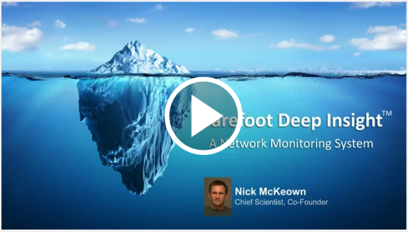 Barefoot Deep Insight Network Monitoring System,