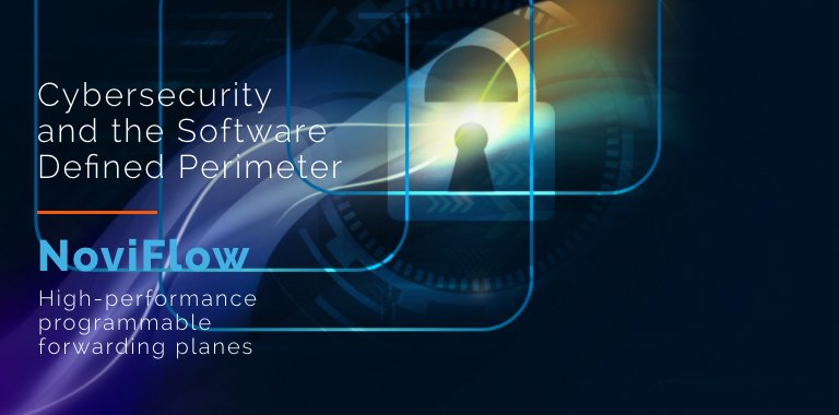 Software Defined Networking Cybersecurity SDN
